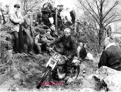 Goldie 13 