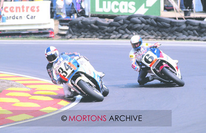 126 ARCHIVE RAINEY SCHWANTZ 