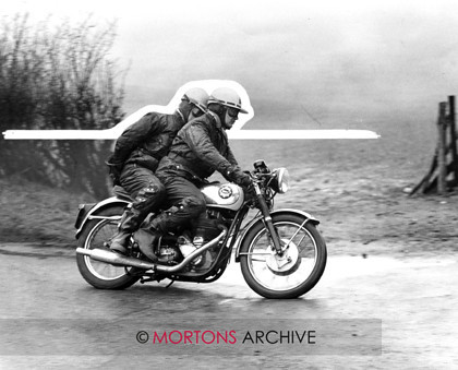Goldie 17 