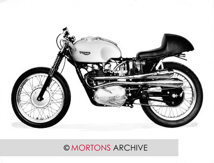 074 BUDDY E 03 