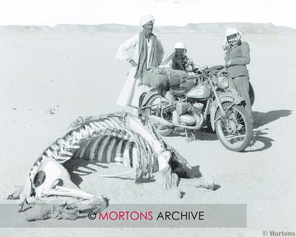BSA85c 