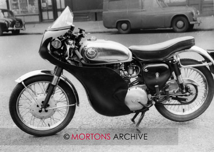 Goldie 16 