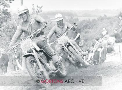 22t19 No. 73 