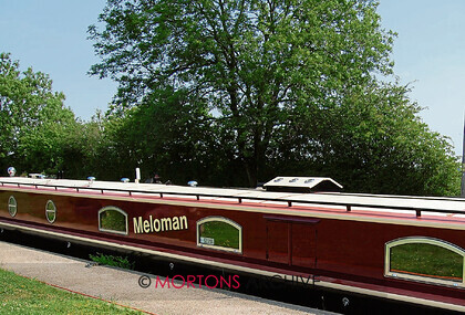 001 taster meloman jr (42) 
