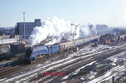 WD594793@64 preservation 01 