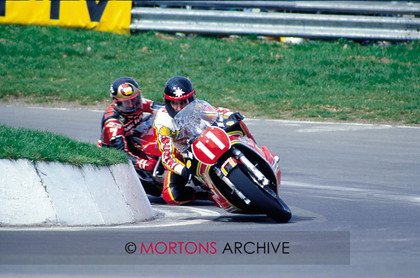 008 PADDOCK GOSSIP 02 